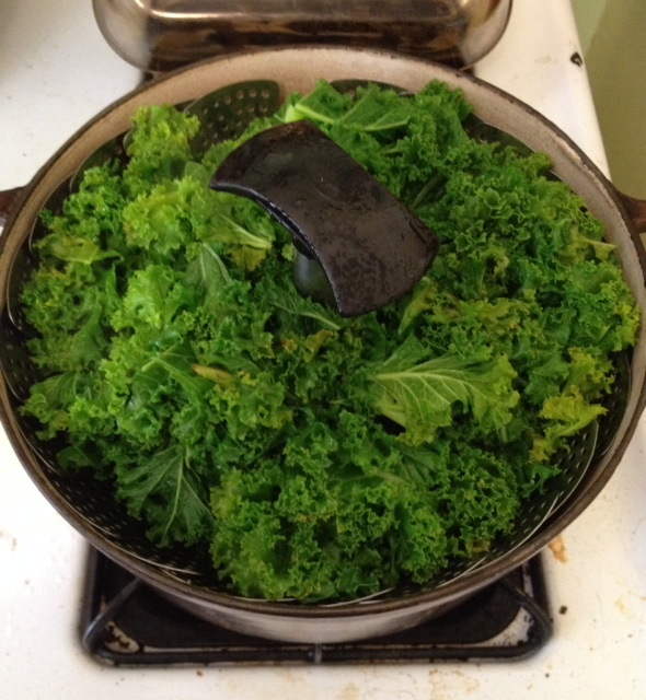 Kale for pesto